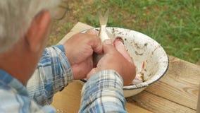 En åldringfiskare gör ren en liten fisk Förbereder en maträtt för familjen lager videofilmer