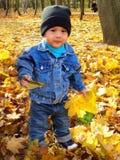 En-år-gammalt behandla som ett barn pojken i en höst parkerar Royaltyfria Foton