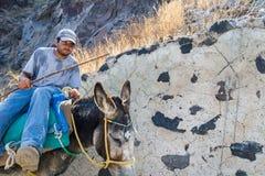 En åsna och hans ägare i Santorini royaltyfri fotografi