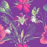 En épousant le modèle sans couture concevez avec les fleurs et les feuilles tropicales exotiques Vecteur Photo stock