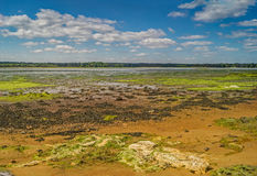 En öde färgglad Dorset våtmarkstrand Fotografering för Bildbyråer
