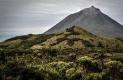 En öde hed på foten av den Pico vulkan royaltyfria foton