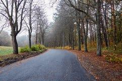 En öde väg i en höst parkerar Fotografering för Bildbyråer