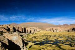 En öken på altiplanoen av Anderna i Bolivia arkivbild