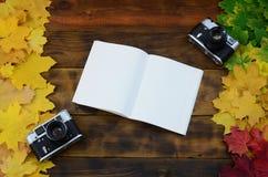 En öppen anteckningsbok och två gamla kameror bland en uppsättning av att gulna stupade höstsidor på en bakgrundsyttersida av den Royaltyfri Fotografi