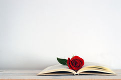 En öppen bok med en röd rosblomma på den Arkivbild