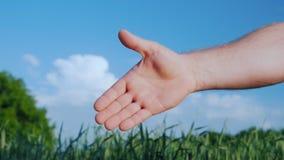En öppen hand sträckte ut för handskakningen av en hand för man` s Mot bakgrunden av ett grönt vetefält och en blått arkivbild