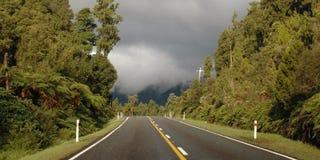 Nyazeeländsk väg Royaltyfria Bilder