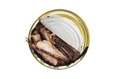 En öppnad metall kan med den bevarade fisken i olja som isoleras på vit bakgrund Top beskådar arkivbild