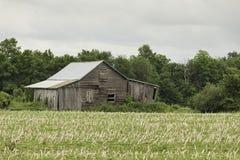En övergiven lantgårdladugårdstruktur Royaltyfri Foto