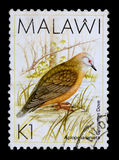 En 1 kwachastämpel skrivev ut i Malawi 免版税图库摄影