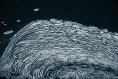 En abstrakt modell av ett skum som bildar i floden Royaltyfria Foton