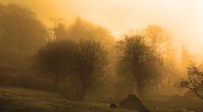 Abstrakt begrepp beskådar av Padley Goege, Derbyshire Royaltyfria Foton