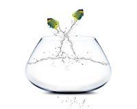 En Acrobatisch zeeëngel die toont springt de doet stock fotografie