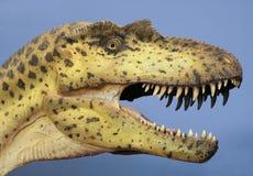 En Albertosaurusutställning på det Nat, San Diego, CA, USA arkivbild