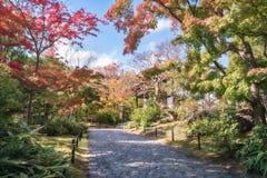 En Alee i trädgården Koko-en i Himeji i höst arkivbilder