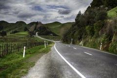 En alguna parte en Nueva Zelandia Imágenes de archivo libres de regalías