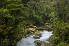 En alguna parte en Nueva Zelandia fotografía de archivo libre de regalías