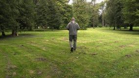 En aménageant le directeur en parc vérifiez les coupures d'herbe en parc banque de vidéos