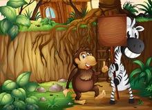 En apa och en sebra som rymmer en tom träskylt i foen Arkivfoto