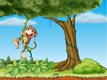 En apa som spelar med vinrankaväxten stock illustrationer