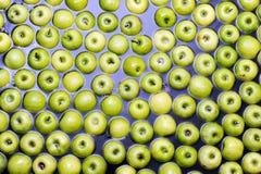 En appelen die sorteren inpakken Stock Afbeeldingen