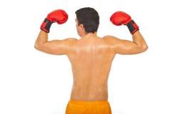 En arrière de l'homme puissant de boxeur Photographie stock libre de droits