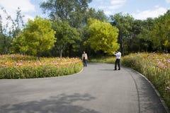En Asie, Chinois, Pékin, parc de Chaoyang, barrière en bambou, fleurs Image stock