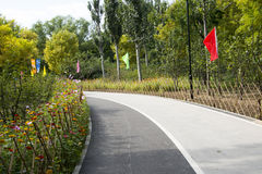 En Asie, Chinois, Pékin, parc de Chaoyang, barrière en bambou, fleurs Photographie stock libre de droits