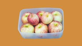 En ask av äpplen Royaltyfri Bild