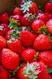 En ask av jordgubbar Arkivfoto