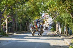 En automne phaéton de Buyukada Chariot de cheval photos libres de droits