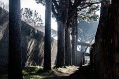 En av banorna av Pompeii arkivfoton