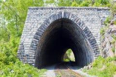 En av de många tunnelerna är ett galleri som 83 meter är långt, byggt i 1904 på denBaikal järnvägen Royaltyfri Bild