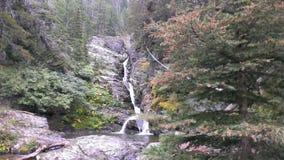 En av de mer högväxta vattenfallen som leder till sjön McDonald Arkivbild