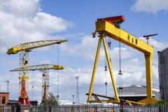 En av den berömda gula Harlanden och Wolffen sträcker på halsen i Belfast arkivbilder