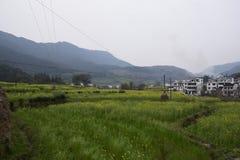 En av Huangshan arkivfoto
