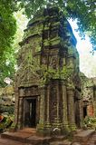 En av templet i Ta Prohm, Angkor, Cambodja Djungeltempel med massiva träd som växer ut ur dess väggar Arkivfoto