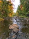 En aval dans l'automne photos stock