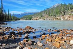 En aval de des automnes d'Athabasca Images libres de droits