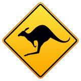 en avant kangourous Photo libre de droits