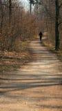 En avlägsen löpare på den vridande skogvägen Royaltyfri Fotografi