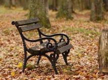 En bänk i parkera Arkivfoton