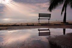 En bänk på en strand Arkivbild