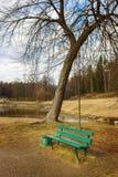 En bänk på parkera av Pavlovsk En fjädradag Helgon Petersbur Arkivfoton