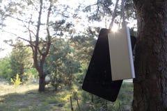 En bärbar uppladdare laddar minnestavlan Driva banken med kabel mot bakgrunden av naturen och trä arkivbilder