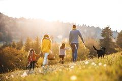 En bakre sikt av familjen med två småbarn och en hund på går i höstnatur arkivbild