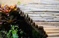 En bambugångbana Arkivfoton