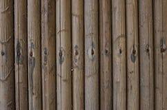 En bambuvägg. Royaltyfri Bild