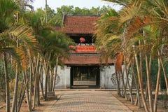 En bana fodrade med palmträd leder till ingången av en buddistisk tempel nära Hanoi (Vietnam) Royaltyfria Bilder